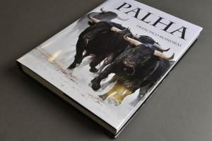 PalhaFB_02